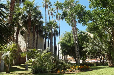 Travel in Málaga - You will be amazed by the beautifulness